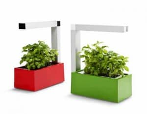 Herbie hydroponic kitchen garden