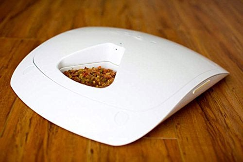 Feed-and-Go-automatic-pet-feeder